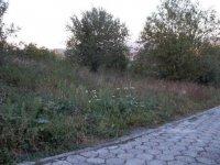Lubaszowa, działka rolna na sprzedaż