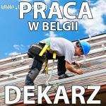 Pilnie poszukujemy Dekarzy do pracy w Belgii - Stała i Legal