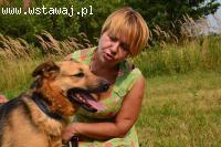 Zwykły niezwykły kundelek Hyzio- przyjazny psiak do adopcji