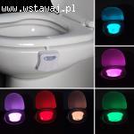 Bowl Light - Wc Dioda Led