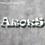 AROKS  Grafika komputerowa, Usługi informatyczne