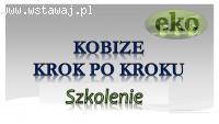 Założenie konta w bazie Kobize, cena tel. 502-032-782