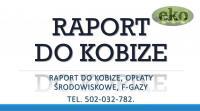 Raportowanie do Kobize, cena tel, 502-032-782, 2017,2018