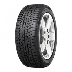 VIKING WINTECH 225/45 R17 91 H