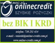 Pożyczki dla osób fizycznych nawet do 100 000 zł !!! bez BIK