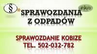 Raport do Kobize, cena, tel, 502-032-782. Opłaty