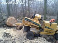 Wycinka drzew, frezowanie pni, zrębkowanie gałęzi, karczowan