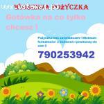 Wiosenna pożyczka na oświadczenie dla każdego !!:)