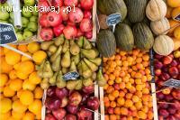 HOLANDIA | Sortowanie owoców i warzyw | BEZ JĘZYKA