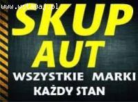 SKUP AUT Jelcz Laskowice Oleśnica