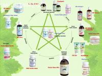 Produkty ziołowe, które pomagają