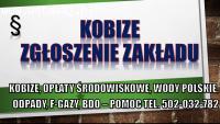 Raportowanie do Kobize, cennik tel. 502-032-782